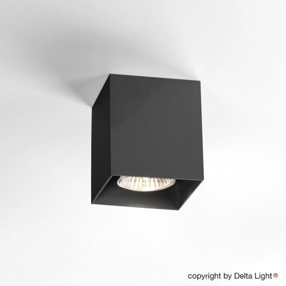 delta light boxy 251. Black Bedroom Furniture Sets. Home Design Ideas